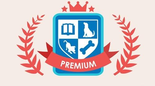 top dog academy logo